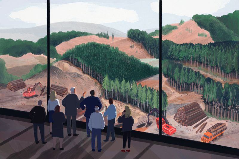 An illustration of people in businesswear looking out a wall of windows at a forest undergoing heavy logging.